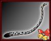 White Cheetah Tail