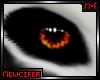 M! Bones Eyes Unisex