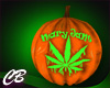 CB Mary Jane Pumpkin