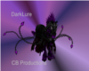 DarkLure