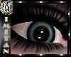 (MI) Eyes CCTT