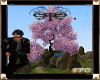 ||SPG||Magical Three 1