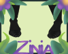 Z  Brie Hooves F