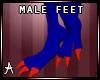 aussie feet m