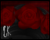 CK-Morea-Rose Crown
