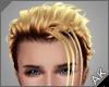 ~AK~ Leo: Blonde