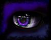 LavNder' eyes M