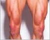 Bigger Legs
