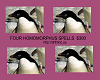 Homomorphus (4)