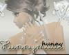 Hunnymade Flash Banner