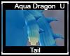 Aqua Dragon Tails