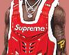Supreme Fox Vest