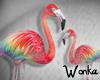 W° Flamingo e Rainbow