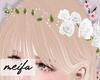 🌸 Rose Crown White