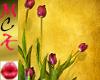 *MCK*Purple Tulips