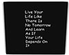 LZS Live Your life Frame