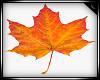 Animated Autumn Leaves