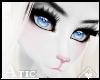 A! Muzzle | Feline 5