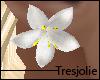 tj:. White Lily Earrings