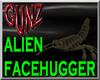 @ Anim. Alien FaceHugger