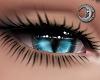 Feline Messenger Eyes F