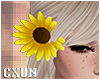 Sunflower Hair R | F