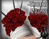 [CS] Thorns&Roses.Head