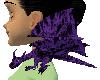 (e) black/purple drake