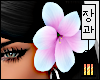 >Mermaid Hibiscus LF