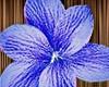 Alaia Hair Flower