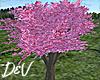 !D Sakura Tree