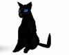 animated black cat
