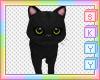 Kids Kitten Binx Pet