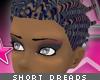 [V4NY] Dreads Brown