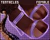 💜 Coco | Heels