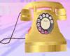 Golden Telephone♥