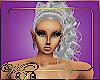 (VN) Silver Vanessa 17