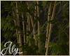 Shades Bamboo