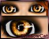 Halloween Eyes-Orange