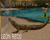 c Crocodile Animated