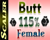 Butt / Hip Resizer 115%