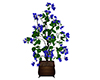 Tree planter Blue