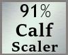 91% Calves Calf Scale MA