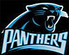 Panthers Hangout Bkdrop