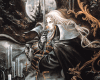 (BR) Alucard Painting