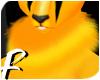 `Golden Bee Neck Fluff