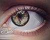 B! Eyes - Forest . R