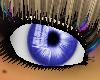 [SD] Eyes Blue240