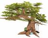 Corner Reading Tree