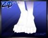 Ginga | Feet